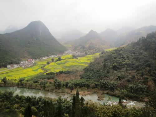 滝から流れてくる九龍河の向こうに広がる菜の花畑。<br />