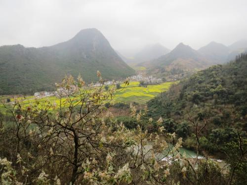 高度が下がるにしたがって菜の花畑や村も近づいてきます。