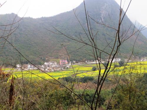 望遠で村の様子を撮ってみました。