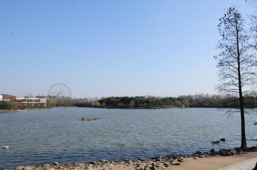 いきなり湖だよ。