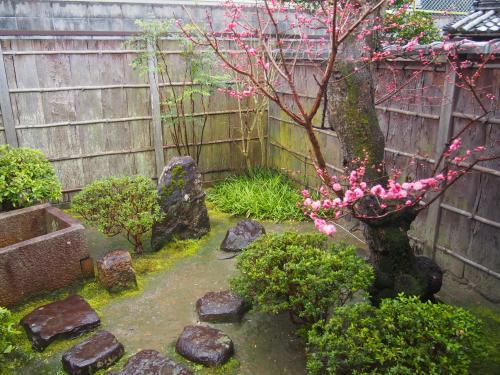 庭には、梅の木かな?<br />すごく、雰囲気がいいお店(゜o゜)