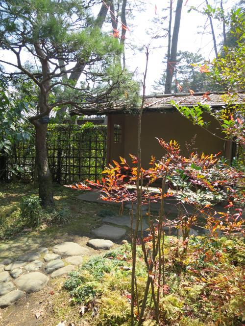 会水庵の庭園<br /><br />
