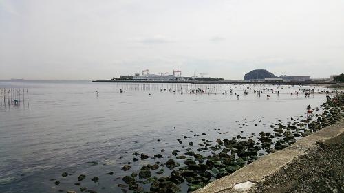 野島から八景島を望む