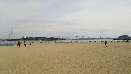 潮干狩りで賑わう、野島の人工砂浜<br />