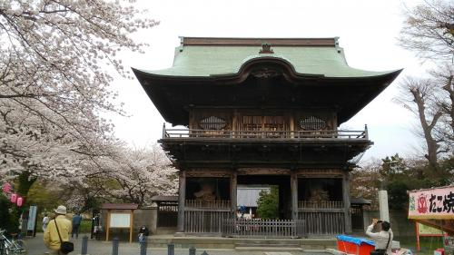 仁王門を正面から<br />花見客向けのたこ焼き屋の屋台が・・・<br /><br />称名寺は真言律宗別格本山の寺院。<br />北条実時が開基して以降、金沢北条氏の菩提寺として鎌倉時代を通じて発展し、伽藍や庭園が整備された。<br />現在の姿は、当時の浄土庭園をモデルに昭和62年に復元されたもの。