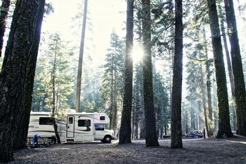 ヨセミテ国立公園内のRVパーク。大自然の中でのキャンプは本当に気持ちがよいです。自然の規模もアメリカサイズ!