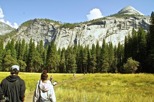 自然の中をのんびり散歩したり