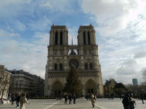 こちらは『ノートルダム大聖堂』。<br />ライトアップされた大聖堂も綺麗だったけど、昼間見るのもいい感じ。<br /><br />北塔の脇から上に上れるようなのですが、昼間の時間に行ったのでそこは超だの列。<br />上に上るのはあきらめました。
