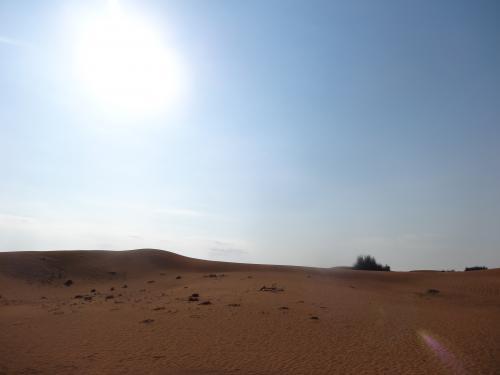 Aran.1netで手配した「砂漠ドライブ&らくだライドツアー」へ。<br />たまたまだけど我々だけでした。<br />ホテルから大体1時間走ったところで砂漠に到着!<br />早朝だからか他に誰もいません!<br />ちなみにツアーは英語ガイドです。でもお互いカタコトなのでなんとかなった(笑)<br /><br />本当はサンドボード(スノボの砂版)も出来るはずだったんだけど昨日の雨のせいで砂の具合が悪いらしく中止…。<br />確かに砂漠なのにサラサラしてない…。