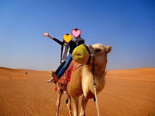 今回のツアー、メインイベント!<br />1年前にタイでゾウに乗ったし、その前にハワイで馬にも乗った。<br />あとは…ラクダでしょう!<br /><br />ラクダさんに乗って30分くらい砂漠をお散歩。<br />こええええええええ<br />ラクダ背高ぇぇぇぇぇぇぇぇ<br /><br />揺れは少ないです。<br />相方は全然平気でキャッキャキャッキャしてたので<br />たぶん私が極端に小心者なんだと思います。