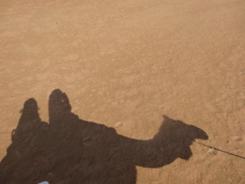 怖くて両手離せない私に変わって相方がカメラマンに。<br />手挙げて〜とか言われたけどいや、無理だろ!
