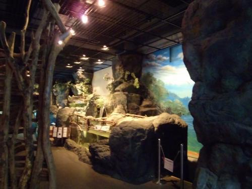 小さな水族館が併設。