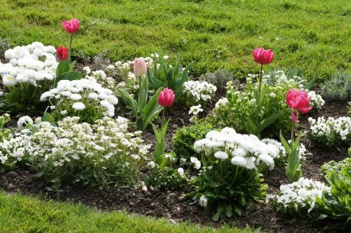 庭園に足を踏み入れると、なんとも美しい春の庭が広がっていました!