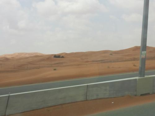 砂漠が見えてきました。<br />砂漠行きたいな〜。行けるかな。