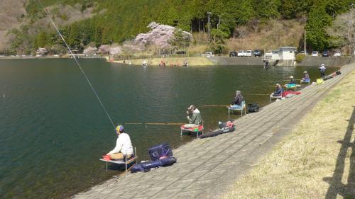 湖畔には多くの釣り人が。<br />殆どの方はヘラ釣りのようだ。
