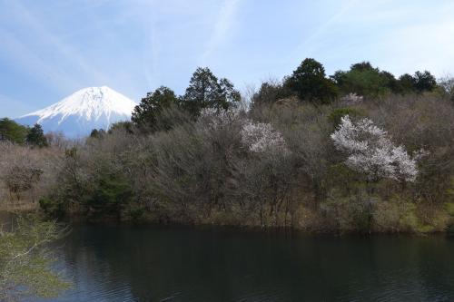 入り江から見える富士。