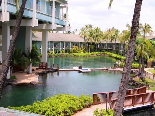 イルカ・ラグーンを囲むように配置されている部屋もあり、部屋のラナイ(ベランダ)からイルカの泳ぐ姿を見ることもできる。