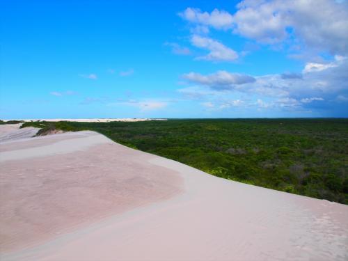 砂と原野の境目。<br /><br />ガイドさんの話だと砂の地域はどんどん広がっているそうです。