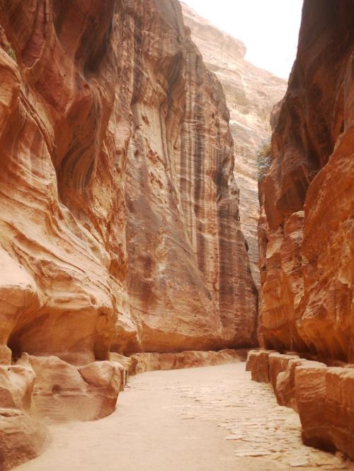 両側に高さ60〜100メートルに断崖に囲まれたシークは迫力満点である。<br /><br />岩肌の色もいいし、時々人が途絶えるときなんて、2000年の昔の遺跡に迷い込んでしまった感覚に陥る。楽しいものである。<br /><br />道路の両側には、ナバタイ人が刻んだ水路がそのまま残っている。<br /><br />
