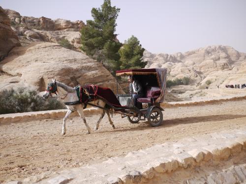 道は、歩行者専用道路と、馬と馬車道に分かれている。<br /><br />行きの時にも、「乗れ乗れ」と客引きがしつこいが、行きには乗る必要がない。<br /><br />体験してわかるのだが、乗るなら断然帰りである。