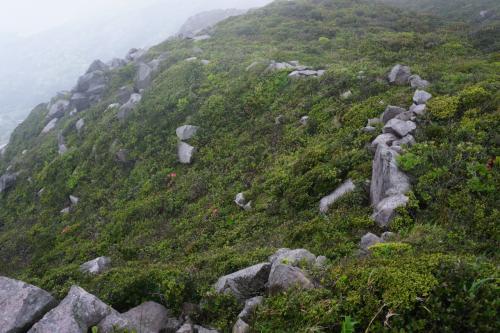 黒島山頂10合目に到着〜。<br />天上山の山頂、ではないです。<br /><br />「オロシャの石塁」と呼ばれる、江戸時代の海上防衛の石塁跡。<br />アメリカやイギリスからの異国人が上陸してきたときに、この山に引き寄せて戦えるように<br />300mに渡って石積みを作ったんだとか。