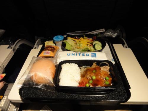 機内食ですが、これも初経験「ビーフorチキン」って、魚ないの?<br />あまり肉が得意でない私は、結局ビーフにしました。