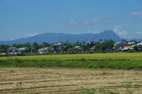 ホイアンの街を出て10分ほど走ると、左の方向にミーソン遺跡のある山が見えてきました。ドライバーの説明によると、あの麓の方にあるそうです。