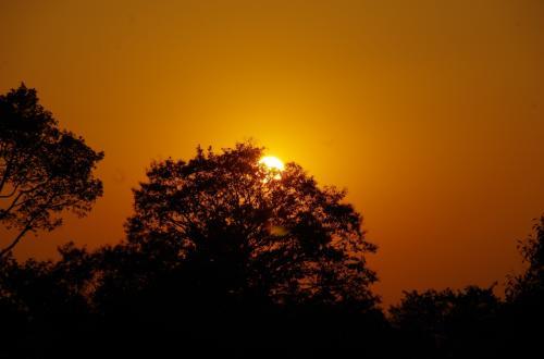 陽をズームで最大限にすると、木にかぶってしまいはしましたが、ようやく思い切り焼けこげた空をとれました。