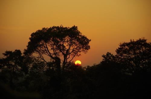 日没は、あっという間です<br />時間との勝負。完全な丸の陽はとれなかったけど、比較的大きめな陽はとれた