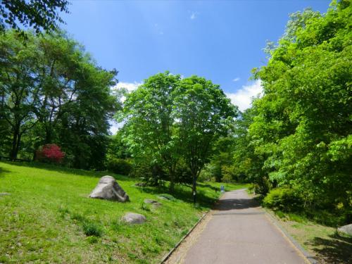 今日は実にすがすがしい。春の晴天下、青空と木々の若葉が目に映る。駒ヶ岳SAには「森林散策路」(写真)があり、20分くらい体操しながら樹林帯を散歩する。<br />