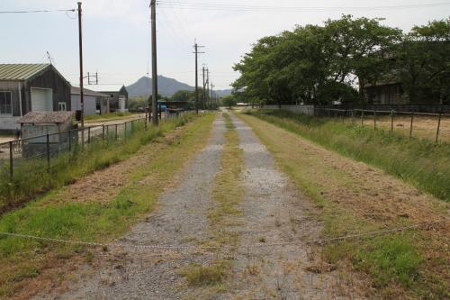 同じく農地の真ん中を通る未舗装の道、ここは映画「火垂の墓」のロケ地になった場所だそうです。
