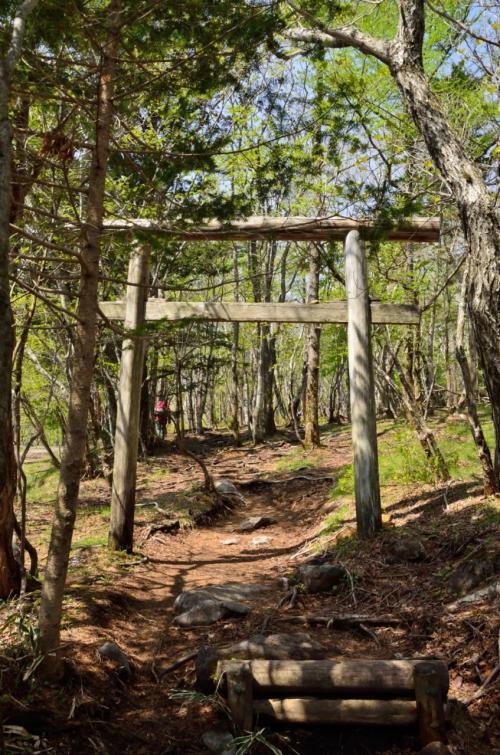 10分ほど歩くと八梅山神社の鳥居が出てくる。