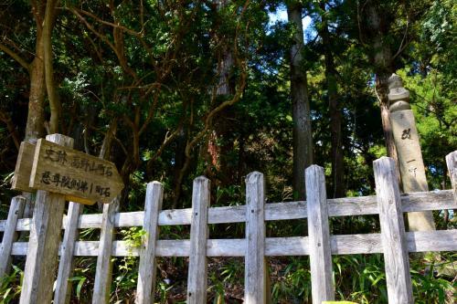 1町(109メートル)ごとに「町石」が置かれていて、まさにこの道が昔ながらの参詣道であることを示してます。<br />何せ、世界遺産『紀伊山地の霊場と参詣道』ですから☆<br /><br /><br />【世界遺産「紀伊山地の霊場と参詣道」の地をゆく】<br />・熊野速玉大社が鎮座する新宮へ<br /> http://4travel.jp/travelogue/10618153<br />・「祈りの道」の終着点熊野本宮大社から川の参詣道を下る<br /> http://4travel.jp/travelogue/10621243<br />・熊野那智大社と那智大滝に詣る<br /> http://4travel.jp/travelogue/10623595