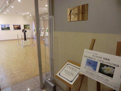 恐らくホテル宿泊者しか訪れない美術館であるが、常設展と企画展が開催されている。