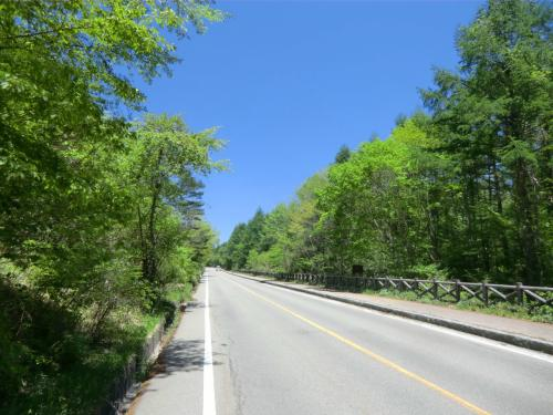 長い長い道のりを行く。車で疾走すればすぐであるが、自転車でペダルをこいでいくと結構時間がかかる。