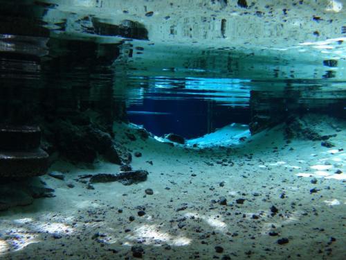 セノーテの真ん中が アイランドになっていて その周りの小さな洞窟を泳ぐ事ができます。