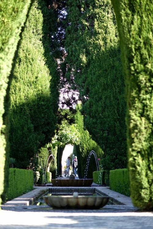 ヘネラリフェへと続く庭園は真ん中に長方形の水路が通り、水がふんだんに使われた庭園です。<br />水路の両側には背の高い木が植えられ、その外側にはバラや季節に応じた美しい花々が咲いています。