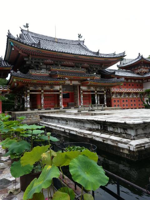 こちらが御本堂 耕三寺というんですね<br />そういえば 昭和の始めに建てられた すごいお寺があると聞いたことがあります