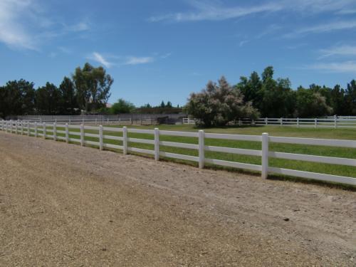 翌日、友人の持つお馬さんに会いに出かけました。<br />