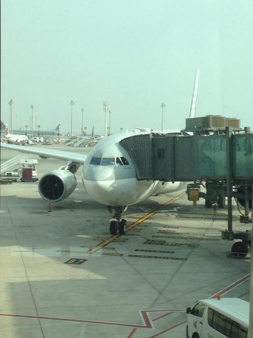 これに乗ってドーハからイスタンブールへ。QR239便に搭乗です。