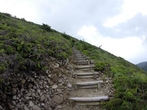 最初はひたすら登り。