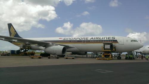 大好きなシンガポール航空機全景。<br />写真ではお伝えできませんが、物凄いエンジン音です。