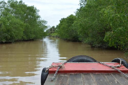 昼食後は、狭い運河をジャングルクルーズ。