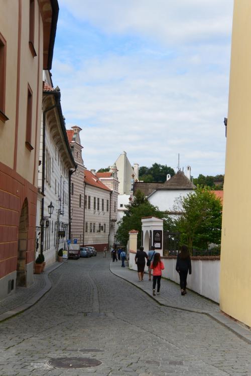 入るとすぐ、地域博物館があります。<br />この写真の右に見える、白い門が、地域博物館です。