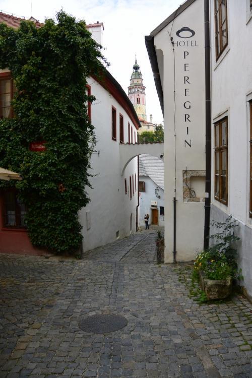 地域博物館を出て、更にまっすぐ歩いて行くと、<br />白いバット(建物の間に渡した柱)の上から、<br />再びカラフルなお城の塔。<br /><br />緑で覆われたお家と、白いお家と、石畳。<br /><br />どこを見ても、絵になる街です。