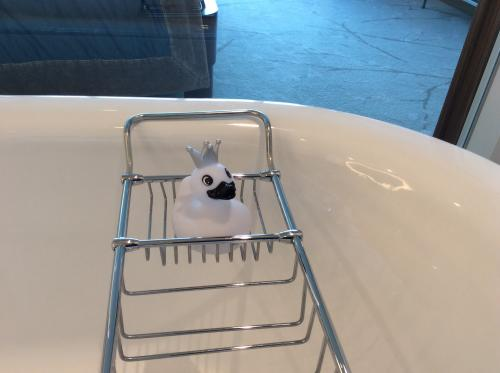 お風呂のコンラッドダック。国によって違うみたいなのでコンプリートしたいなあ。ちなみにダックは4羽め。