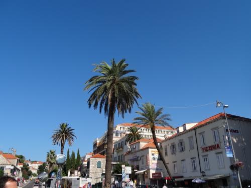 ホテルを9時過ぎに出発し、街中を走ってピレ門の前のターミナルに到着。今日も天気がよくてよかったです