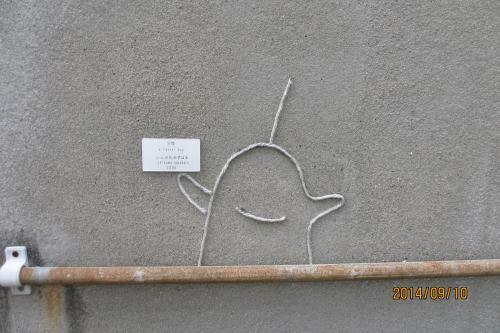 色々な壁にアート作品が