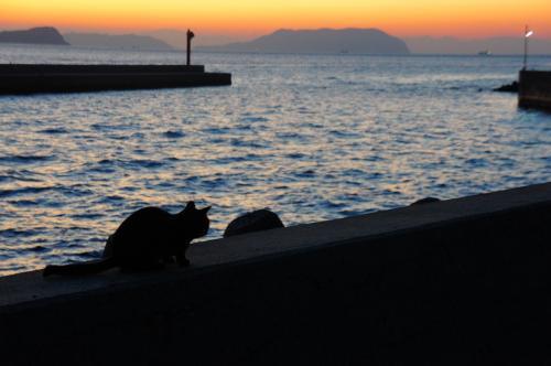 瀬戸内の祝島(いわいしま)で迎える朝。