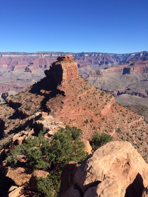 Cedar Ridgeから見たO'Neill Butte。もう目と鼻の先。そこまで行きたい気もするが無理せずここで引き返すことにする。グランドキャニオンは、最初に下って帰りが上り。行きはよい良い帰りは怖い。もし上りで力尽きたらと思うと無理はできない。